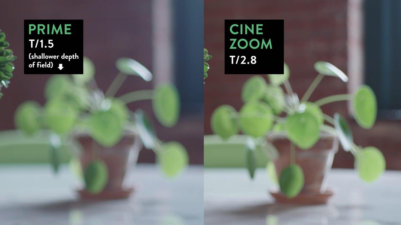 prime vs zoom depth of field comparison