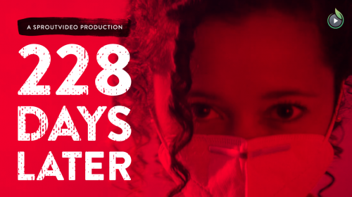 228 Days later